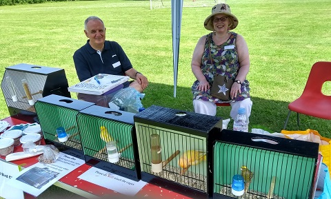 A table with caged birds at a school summer fair, June 2019